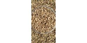 Kanapių sėklos 1 kg