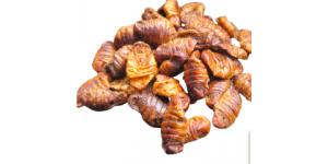 Šilkverpio  lervos (minkštos) 500 g
